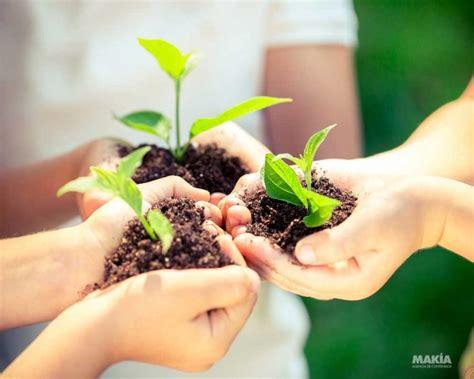 10 acciones para cuidar el medio ambiente   Makía