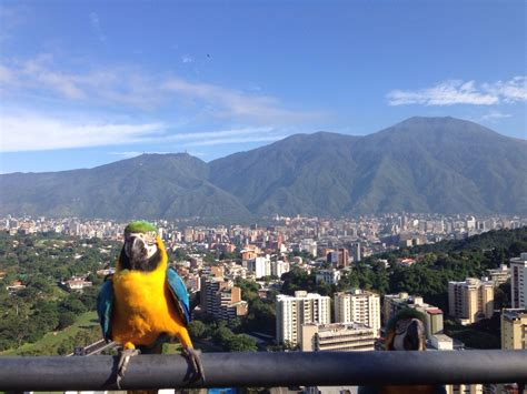 10 Best Places to Go in Caracas, Venezuela