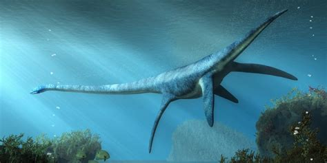 10 Características del Período Jurásico