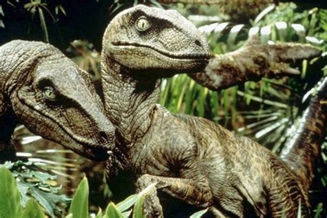 10 Facts About the Velociraptor, a World Famous Dinosaur ...