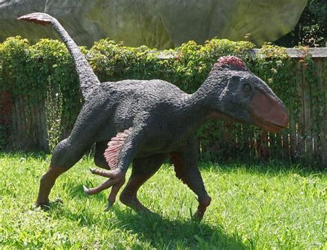 10 Facts About Utahraptor, the World s Largest Raptor ...