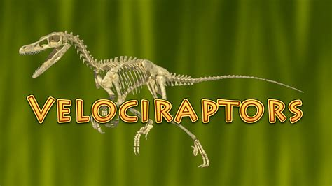 10 Facts About Velociraptor  Dinosaurs for Kids    raptor ...
