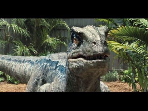 10 Facts: Velociraptor   YouTube