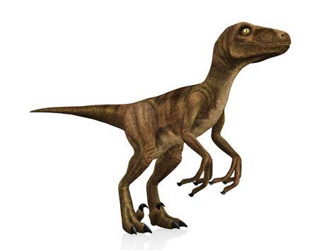 10 Fakta om Velociraptor, en världsberömd Dinosaur