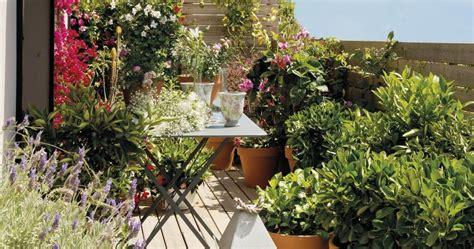 10 plantas para balcones soleados – Jujuy Se Mueve