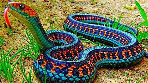 10 Serpientes Mas hermosas Que No Creeras Que En Verdad ...