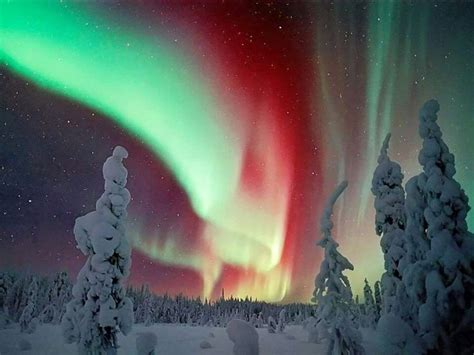 1000+ images about Aurora Borealis! on Pinterest | Milky ...