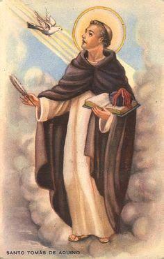 1000+ images about Santo Tomás de Aquino on Pinterest | St ...