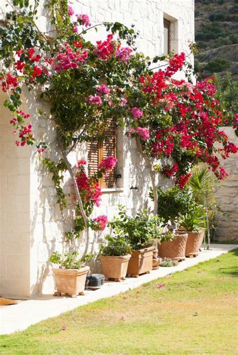 1001 + ideas sobre cómo decorar un jardín pequeño ...