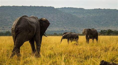 11 Breathtaking Natural Landscapes in Kenya