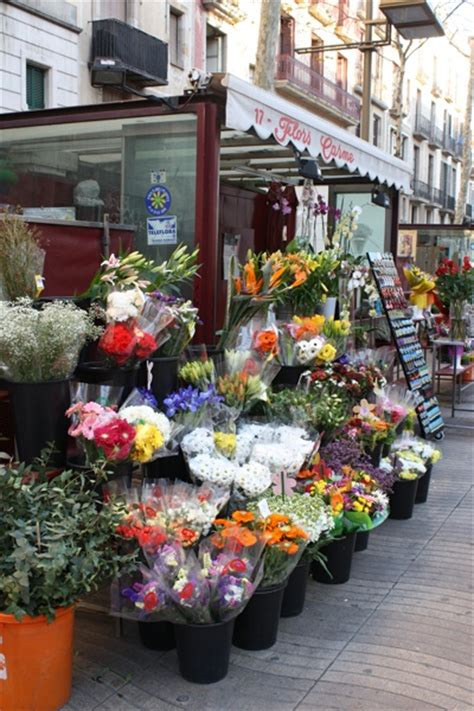 114 best Madrid, Barcelona and the gardens of spain images ...