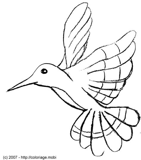 119 dibujos de Aves para colorear | Oh Kids | Page 7