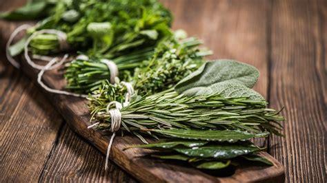 12 hierbas aromáticas imprescindibles para cocinar ...