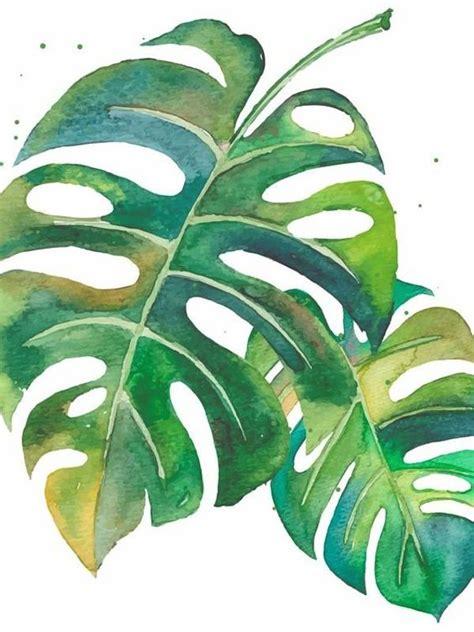 12 láminas decorativas botánicas para personalizar tus ...