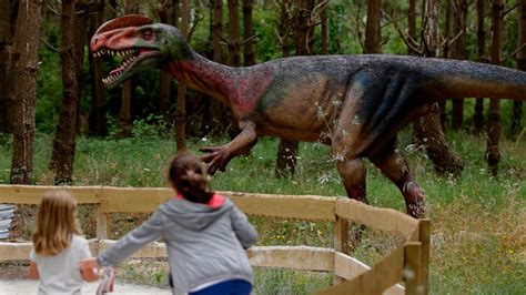 120 real scale dinosaurs are now roaring at a park in ...