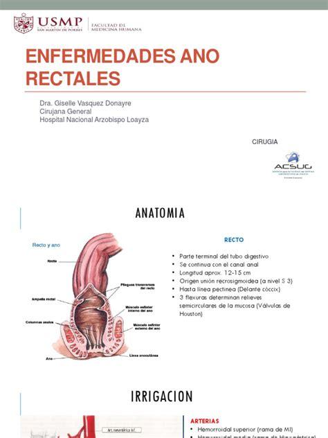 13 Enfermedades Ano rectales | Recto | Hemorroides