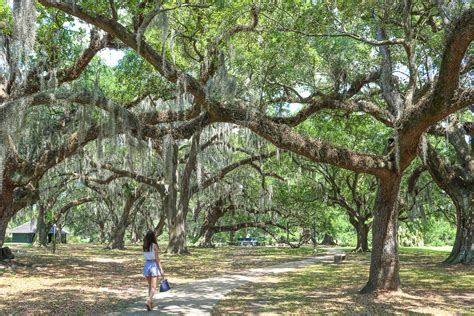 13 things to do in New Orleans, Louisiana • From All Corners