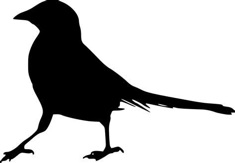 15 Bird Silhouette  PNG Transparent  | OnlyGFX.com