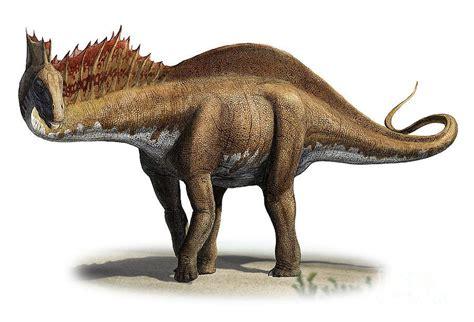 15 dinosaurios raros   Ciencia y Educación   Taringa!
