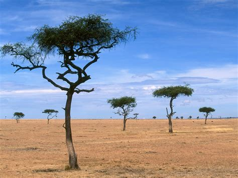 15 paisajes extraordinarios   Incredible scenery ...