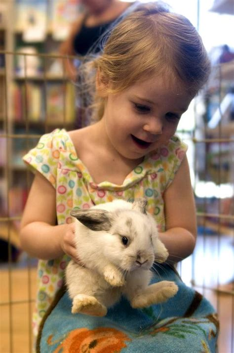 15 Petting Zoos and Farms in and Around Phoenix   Kid 101