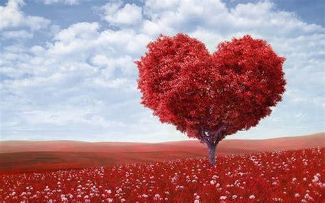 150+ Romantic Heart Pictures · Pexels · Free Stock Photos