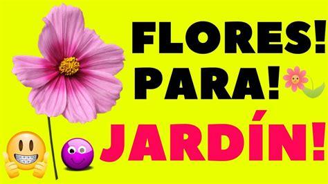 16 Plantas de JARDÍN Con FLORES Resistentes al Sol    YouTube