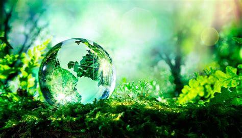 16 tips para ayudar al medio ambiente sin gastar dinero