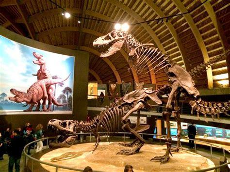 164 best images about Jurassic Park/Parque Jurásico on ...