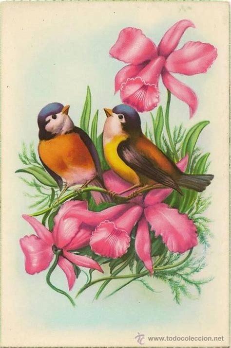17 Best images about dibujos de pájaros on Pinterest ...