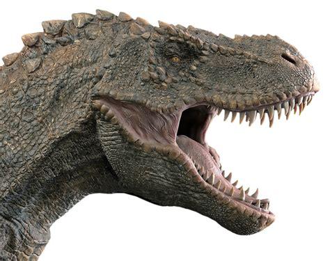 170 miljoen jaar oude dino pootafdrukken ontdekt in ...