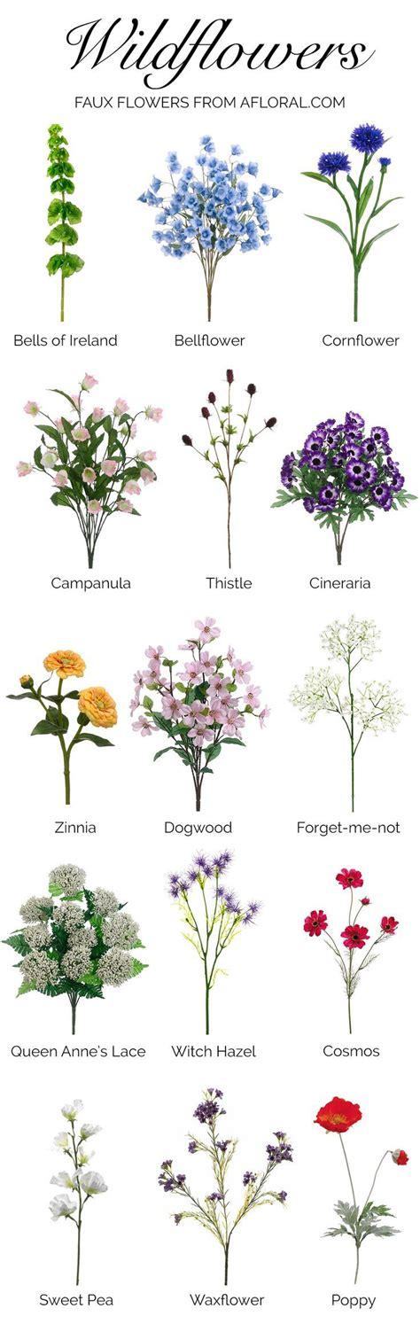 179 best Flower Names: Reference images on Pinterest ...