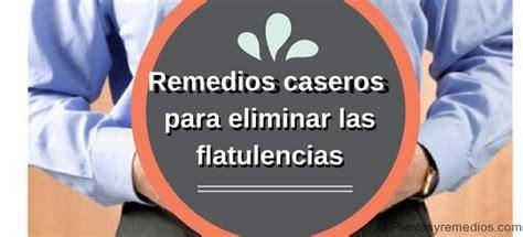 19 Remedios caseros para las flatulencias o gases  Plantas ...