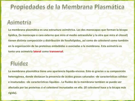 2 1 membrana plasmática   aspectos estructurales