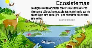 2 LOS ECOSISTEMAS   Pictoeduca