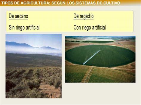 2 tipos de agricultura