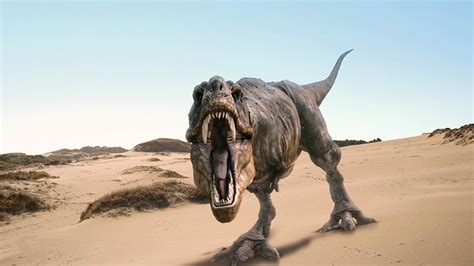 20+ Smart Looking Dinosaur Pictures