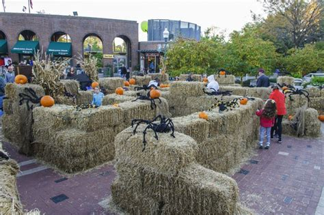 20 St. Louis Events to Put You in the Halloween Mood