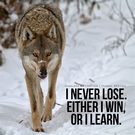 20 Strong Wolf Quotes To Pump You Up | Wolves & Wolfpack ...