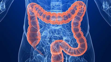 25 Important And Scary Facts About Colon Cancer   Tons Of ...