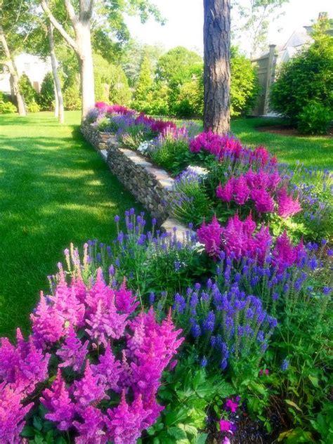 25 plantas de exterior resistentes al sol y al calor