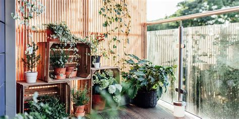 3 Easy Balcony Garden Ideas   Small Garden Ideas