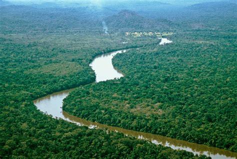 3. Ecosistemas – ecologia171