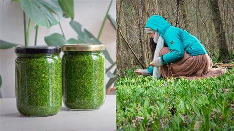 3 formas de conservar hierbas aromáticas [Plantas ...