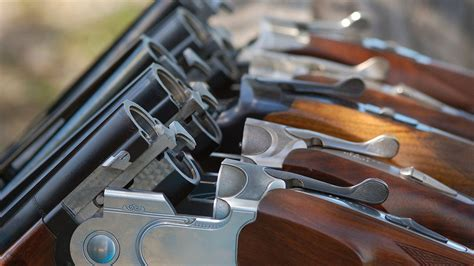 3 Sencillos pasos para renovar tu permiso de armas en Pamplona