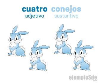 30 Ejemplos De Adjetivos Posesivos En Ingles Y Español ...