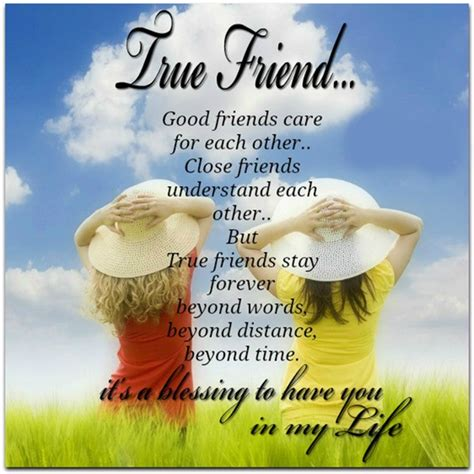 37 True Friends Quotes and Sayings with Images   Good ...