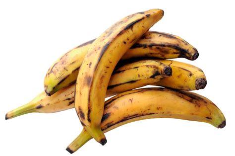 4 tipos de plátano que debes conocer | Cocina Vital