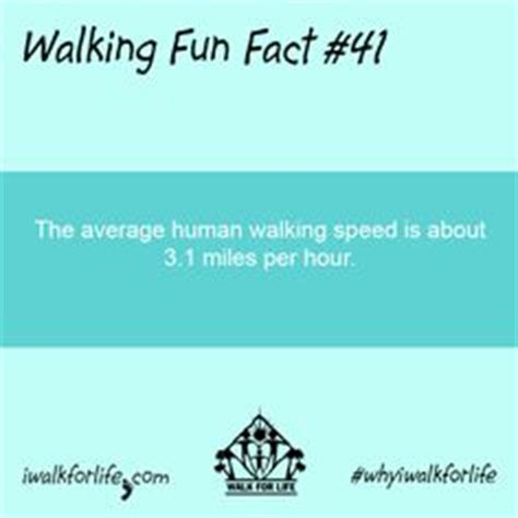 40 Best Walking Fun Facts images in 2014 | Fun facts, Walk ...