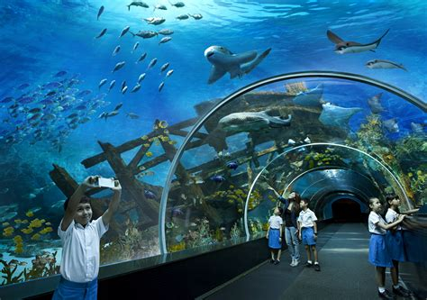 45 Best Places to Visit in Singapore   Travel in Singapore